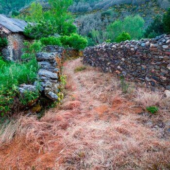 Casa rural en león omañuela aguas frías II